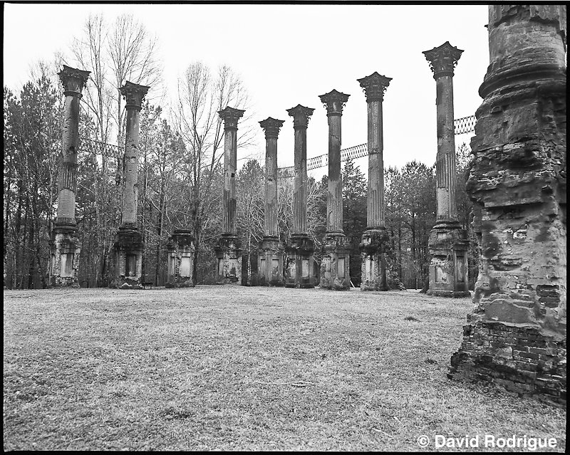 Windsor Ruins, MS
